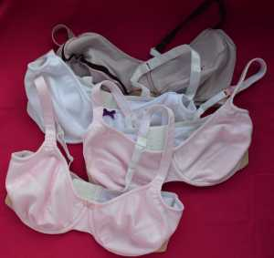 The first four bras